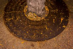 Tree Grate. With fallen leaves on State Street in Madison, Wisconsin stock photos