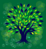 Tree with green background Stock Image