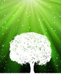 Tree with green burst for your design. EPS 8 Stock Photography
