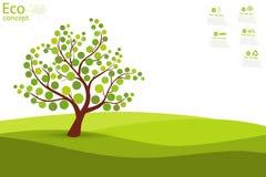 Tree on green grass. Royalty Free Stock Photos