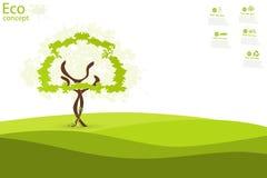 Tree on green grass. Stock Image