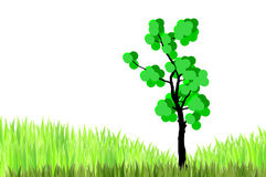 Tree  and  green grasses Royalty Free Stock Photo