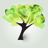 Tree In Green Royalty Free Stock Images