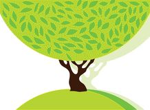 Tree with green leafage. Vector abstract silhouette of a tree with ornamental foliage Stock Photography