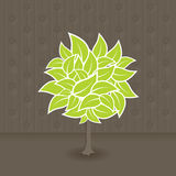 Tree with green leafs. Vector Stock Image