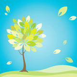 Tree with green leaves Royalty Free Stock Photo