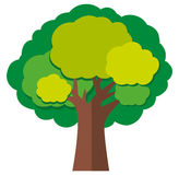 Tree with green leaves. Illustration stock illustration