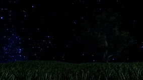 Tree on Green Meadow and Starry Sky with Falling Star, Time Lapse, stock footage stock video footage