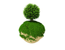 Tree on green planet Royalty Free Stock Photo