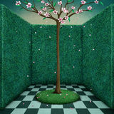Tree in green room Royalty Free Stock Photography