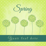 Tree with green spiral leaves, spring theme Royalty Free Stock Images