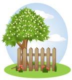 Tree, Green, Woody Plant, Plant Royalty Free Stock Photo