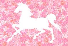 Tree greeting card horse cherry tree Stock Photos
