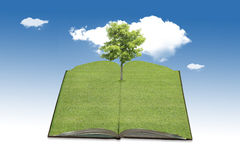 Tree growing from a book. Stock Image