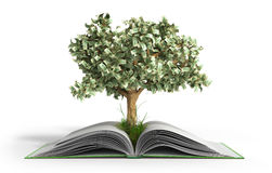Tree growing from book A big open book with coins and tree Readi Royalty Free Illustration