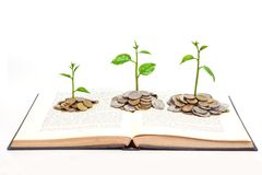 Tree growing on a book. Trees growing from books with coins / A big open book with coins and tree. Reading makes you richer concept royalty free stock photos