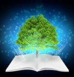 Tree growing from center of open magazine. Stock Image
