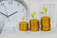 Tree growing on coins stack ,concept of investment. Growth royalty free stock image
