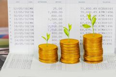 Tree growing on coins stack ,concept of investment. Growth stock image