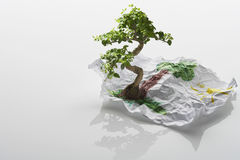 Tree Growing From Drawing Royalty Free Stock Image