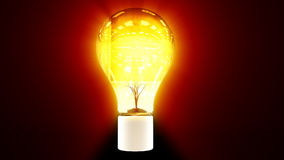 Tree growing inside flashing colorful bulb, stock footage stock video footage
