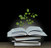 Tree growing from open book Stock Images