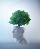 Tree growing out of an abstract  head Royalty Free Stock Photography