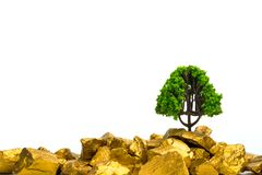 Tree growing on pile of gold nuggets, growth business finance investment concept. Idea stock photo
