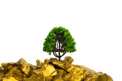 Tree growing on pile of gold nuggets, growth business finance in. Vestment concept idea stock photo