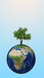 Tree growing on a planet Royalty Free Stock Photography