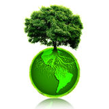 Tree growing from plant earth. Conceptual illustration of a tree with its long roots in the green planet earth, white background Stock Photography