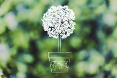 Tree growing from a vase with world map on it Royalty Free Stock Photos