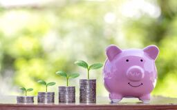 The tree that grows on the coin stack includes pig piggy banks to save money, ideas and financial.