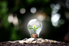 The tree grows on money in energy-saving light bulbs, the concept of financial growth, energy saving.