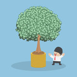 Tree growth from money coin Stock Photo