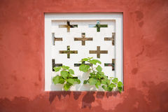 Tree growth through white air vents on the red wall Royalty Free Stock Images
