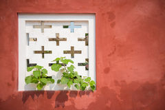 Tree growth through white air vents on the red wall Stock Images