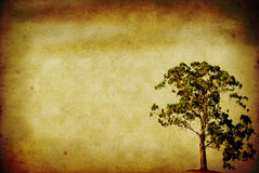Tree on Grunge Paper Stock Photography