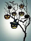 Tree Halloween Pumpkins Bats White Background Stock Photos