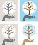 Tree Hand Royalty Free Stock Photography