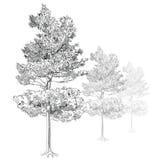 Tree - Hand Drawn Stock Photo