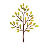 Tree. Hand-drawn watercolor Royalty Free Stock Photo