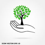 Tree in hand icon Royalty Free Stock Photo