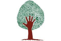 Tree hand Stock Photography