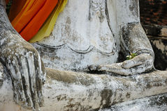 Tree of hand. In temple thailand Stock Photography