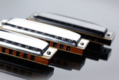 Tree harmonicas Royalty Free Stock Image