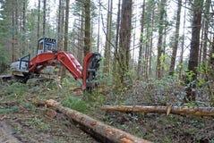 Tree Harvesting equipment. Royalty Free Stock Image