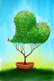 A tree heart. A green tree in the shape of a heart with green red and yellow leaves.  A red bird sits on the tip of the tree.  The tree is being grown in a Stock Images