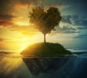 Tree heart in ocean stock photos
