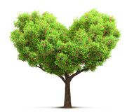 Tree in heart shape 3D illustration Stock Photos